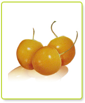 Incan Goldenberries (100g)