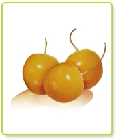 Incan Goldenberries (500g)